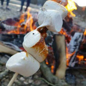 Σετ Ζαχαρωτά με Ξυλάκια για Μπάρμπεκιου Not Just BBQ Bbq Marshmallows Tube 250g
