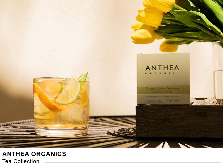 Τσάι Οργανικό Anthea Obliq